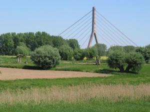 Grünland mit Fleher Brücke im Hintergrund